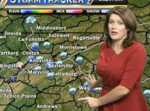 Meteorologist Slams Criticism Of Her Appearance In Stellar Fashion