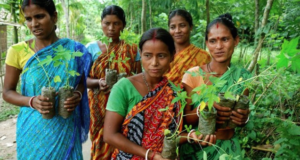 The Indian Village Celebrating The Girl Child With Eco-Feminism Project
