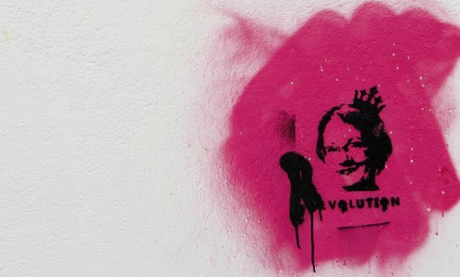 feminist-initiative-Gudrun-Schyman
