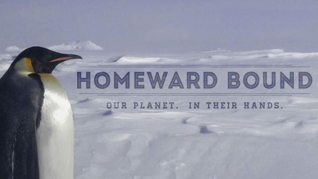 Antarctic-expedition-homeward-bound