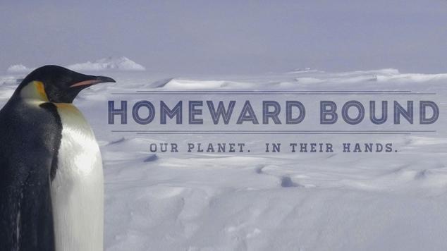Antarctic-expedition-homeward-bound