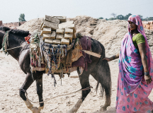 How This Animal Welfare Org. Is Improving The Status Of Women In The Developing World