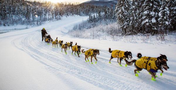 katie-orlinsky-leaders-of-the-pack