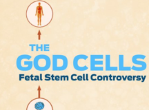 Can Fetal Stem Cell Research Cure Diseases? 'The God Cells' Docu Answers This Question